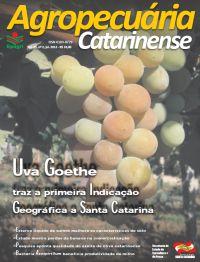 capa-julho-2012