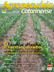 capa-julho-2013