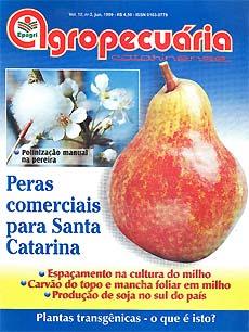 capa-rac-jun-1999