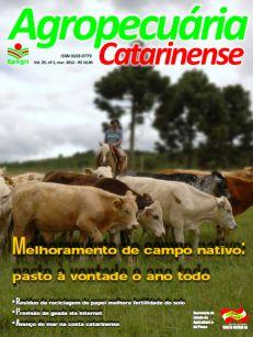 capa-marco-2012