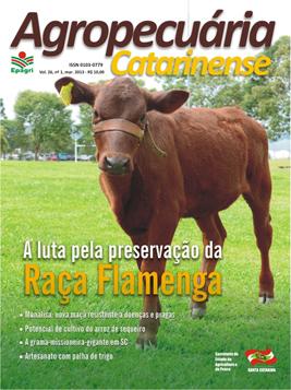 capa-marco-2013